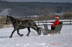 "This is on my ""Christmas"" Bucket List, is to go for my own personal sleigh ride, with hubby or not!"