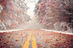 Photograph Autumn Snow by Sue Ellen Tolman on 500px