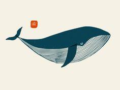 Afbeeldingsresultaat voor whale illustration