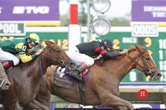 Ginger Punch winning the 2007 Breeders' Cup Distaff (USA-G1) (photo: Horse Photos)