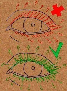 La forma correcta de dibujar pestañas