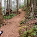 Mt. Walker Trail is a 2 mile trail located near Brinnon