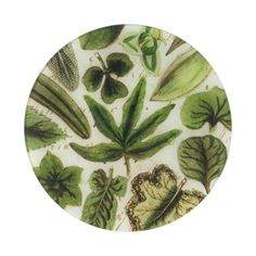 John Derian Company Inc — Leaf Collage A