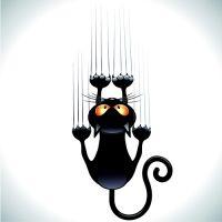 amusing black cat vector