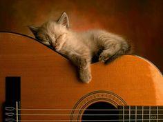 I Love Guitar! :)