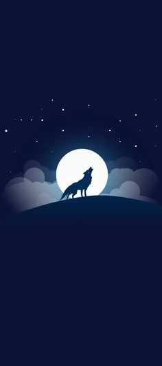 Samsung, galaxy s8, s8 plus, s9, s9 plus, wallpaper, wolf, night, clean, backgrounds, google, android