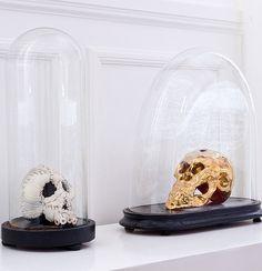 Skulls in a Bell Jar