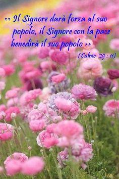 Salmo 29:11
