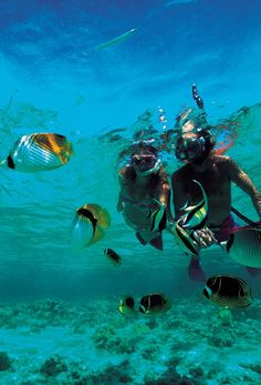 snorkeling at aulani
