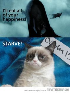 Grumpy Cat vs the Demontors! | Go ahead then…Starve! | @themetapicture.com