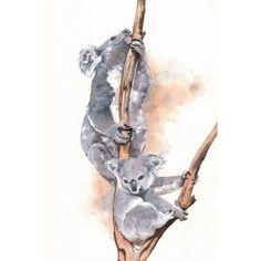Koala watercolor painting wildlife art  print of by Splodgepodge, $15.00