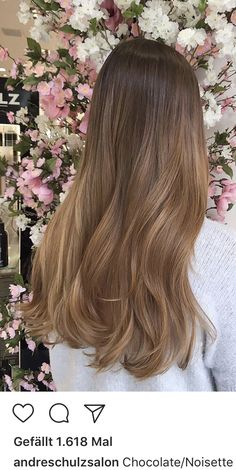 Brown Hair Balayage, Blonde Hair With Highlights, Brown Blonde Hair, Light Brown Hair, Light Hair, Brunette Hair, Dark Hair, Hair Shades, Aesthetic Hair