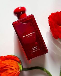 Jo Malone London Scarlet Poppy Cologne Intense – heypretty.ch Best Makeup Tips, Best Makeup Products, Scarlet, Jo Malone, Makeup Junkie, Cologne, Poppies, Highlights, Perfume Bottles