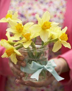cottage on daffodil lane .. X ღɱɧღ ||