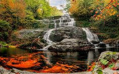 Download wallpapers waterfall, autumn, mountains, forest, beautiful waterfall, yellow leaves, rock