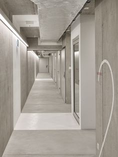 MLZD adds subterranean sports hall to school in former monastery Concrete Architecture, School Architecture, Gym Interior, School Sports, Concrete Wall, Corridor, Typography Design, Stairs, Gallery