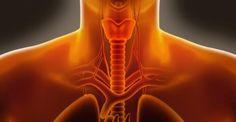 Λόξυγγας: Πώς να τον σταματήσετε στο λεπτό - http://biologikaorganikaproionta.com/health/195205/