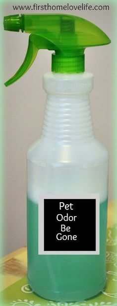 Homemade Pet Odor Eliminator. 1 part Listerine, 2 parts water, peroxide and vinegar!