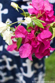 Flowers for you! FamilyFreshCooking.com © MarlaMeridith.com