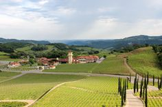 The Views at Miolo Winery