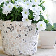 Cool DIY Flower PotsFlower pots are highly underrated pieces. Most of us only think of them as functional pieces, meant for planting or keeping our plants in, and which d. Diy Flowers, Flower Pots, Fresco, Small Flowering Plants, Diy Planters Outdoor, Planter Ideas, Succulent Frame, Diy Monogram, Garden Crafts
