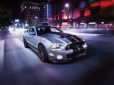 HD wallpaper: silver and black Ford Mustang coupe, muscle cars, Shelby GT, land Vehicle Shelby Gt500, Ford Mustang Shelby, Ford Mustang Coupe, Mustang Cars, Squat, Ford Mustang Wallpaper, Car Wallpapers, Hd Wallpaper, Car Manufacturers