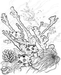 Complex Coloring Pages for Adults | Coloring picture for adults. Print this picture from the sea wit hdrew ...
