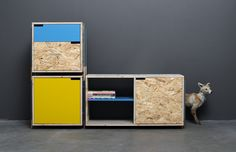 shelves by derelict