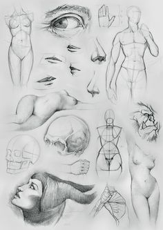Anatomy Sketches and Other by ~NaamahVonhell on deviantART