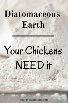 Diatomaceous earth benefits and uses for chickens. It is a great natural product… Diatomaceous earth benefits and uses for chickens. It is a great natural product you need on your homestead. Chicken Garden, Chicken Life, Backyard Chicken Coops, City Chicken, Farm Chicken, Portable Chicken Coop, Best Chicken Coop, Building A Chicken Coop, Urban Chicken Coop