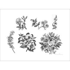 vintage black and white floral 6 temporary tattoos (20 CAD) ❤ liked on Polyvore featuring accessories and body art