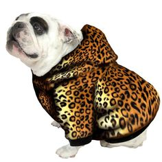 db2c4533eac Amazon.com   English Bulldog Dog Sweatshirts - Sizes BEEFY and BIGGER THAN  BEEFY with More than 20 Fleece Patterns to Choose From!