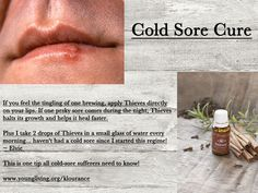 Young Living Essential Oils - Cold Sore Cure by Sugarbean Cold Sore Essential Oil, Essential Oils For Colds, Essential Oil Uses, Natural Essential Oils, Young Living Essential Oils, Cold Sore Cure, Living Essentials, Young Living Oils, Just In Case
