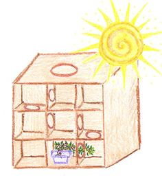 Science experiments for kids - Mazes for sprouts - phototropism