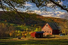 A New England barn in fall foliage. Sigh...