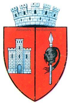 Ținutul Prut. Județul Soroca. Soroca. Capital City, Coat Of Arms, Romania, Flag, Cities, Art, Art Background, Kunst, Performing Arts
