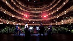 Concierto para el bioceno | concert for plants | barcelona, spain 2020