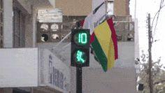 Pedestrian Light In Peru
