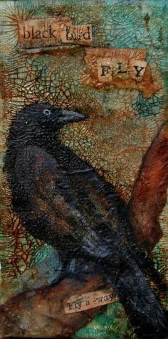 Corvids From Front Door Studios. Great crow although the real ones are pigs at my suet feeder! Crow Art, Raven Art, Bird Art, Raven Totem, Quoth The Raven, Dark Wings, Jackdaw, Crows Ravens, Illustrations