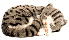Lovable, cuddly, breathing, life-like cat stuffed animals…the name says it all…