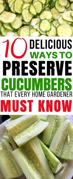 Learn how to preserve cucumbers! Do you have cucumbers piling up from the garden? Here are 10 ways to preserve cucumbers that will let you enjoy their crisp goodness all year long!  Food Preservation | Canning | Preserve Cucumbers