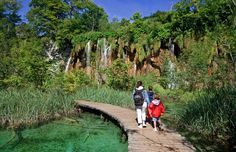 Plitvice is the best known of the eight national parks of Croatia, a country where around ten per cent of the area enjoys some kind of protected status