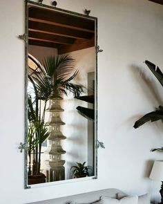 Beach Living Room, Living Room Decor, Living Rooms, Air Plant Display, Plant Design, Hanging Planters, Appreciation, Design Inspiration, Design Ideas
