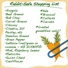 Bunny's Shopping List (Safe Veggies) - I don't have a pet rabbit, but good to know when pet sitting