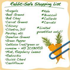 Bunny's Shopping List (Safe Veggies)