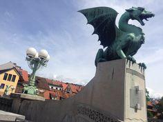 Dragons of Ljubljana