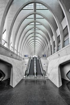 [A3N] : Liège-Guillemins railway station / Santiago Calatrava architect