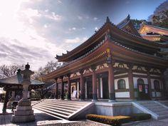 Hase-temple  長谷寺