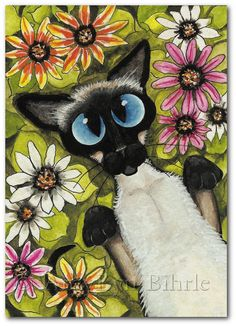Siamese Cat - Wild Flowers Art - Art Prints or ACEO by Bihrle ck204