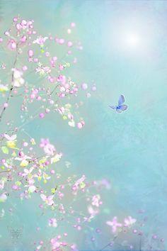 Photograph ~ Fairy Garden ~ by Jasna Matz on 500px